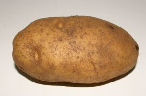 Is this really a potato? Or is it a character in a Dostoyevsky novel experiencing a psychotic break?