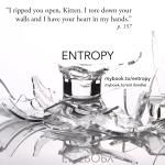 mybook.to/entropy